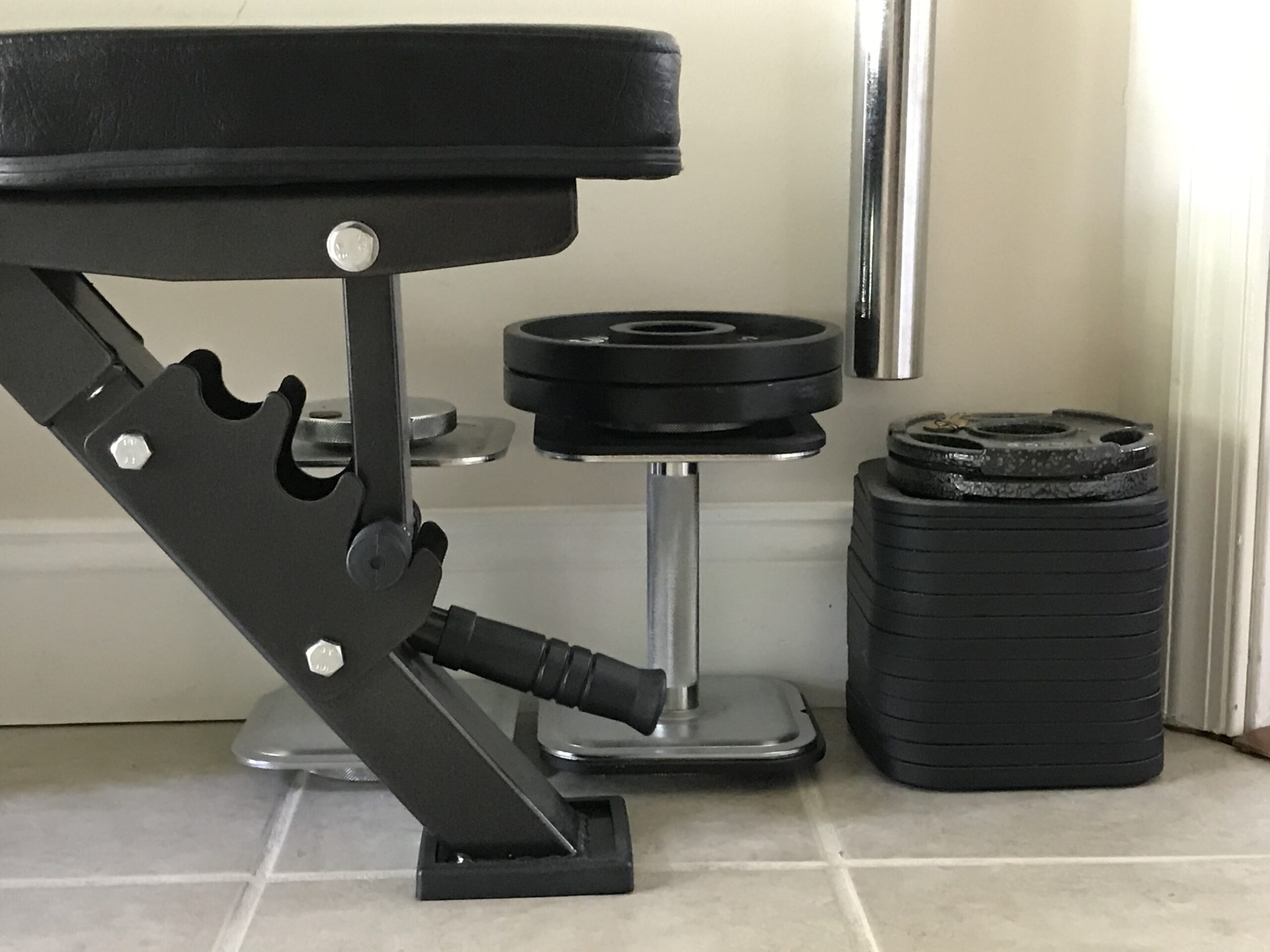 weight bench with free weights