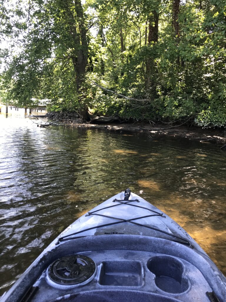 kayak on a shady river