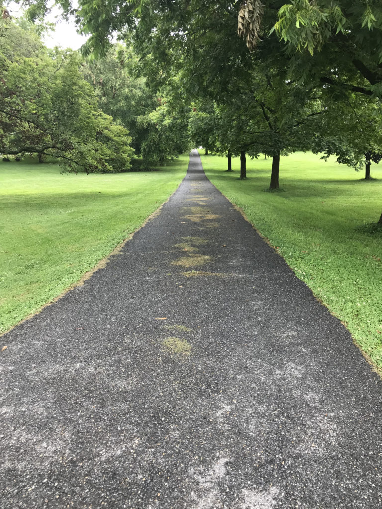 A long driveway surrounded by grass.